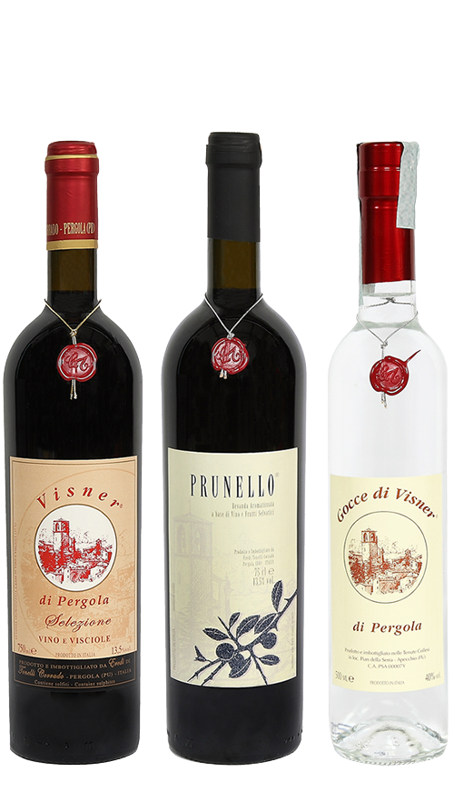 Vino di visciole e prunello